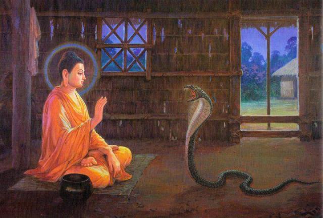 serpente-e-o-sabio