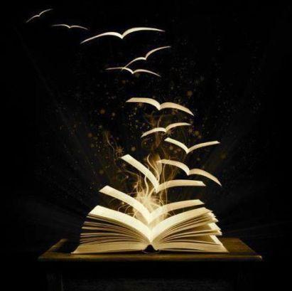 livro-e-pc3a1ginas-voando