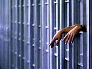 cadeia6